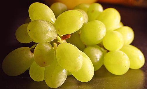 grapes-diet.jpg