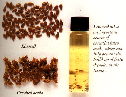 linseeds-linseed-oil-benefits.jpg