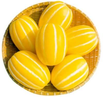 yellow-melon-diet.jpg